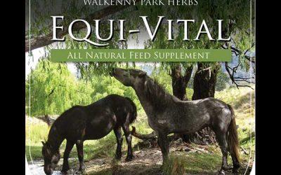 WP Equi-Vital All-Natural Feed Supplement Victoria Ferguson
