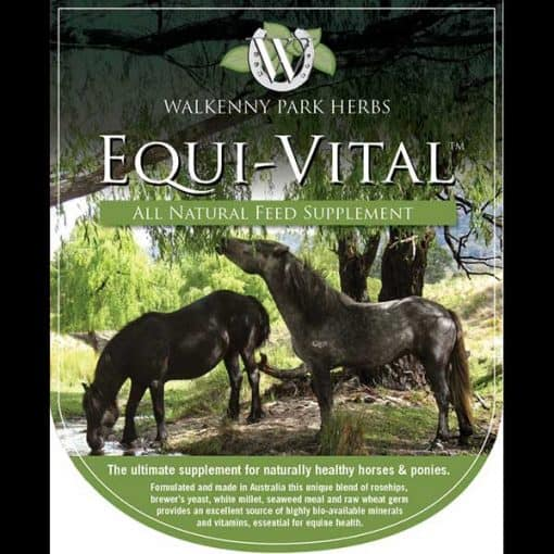 WP Equi-Vital All-Natural Feed Supplement Victoria Ferguson