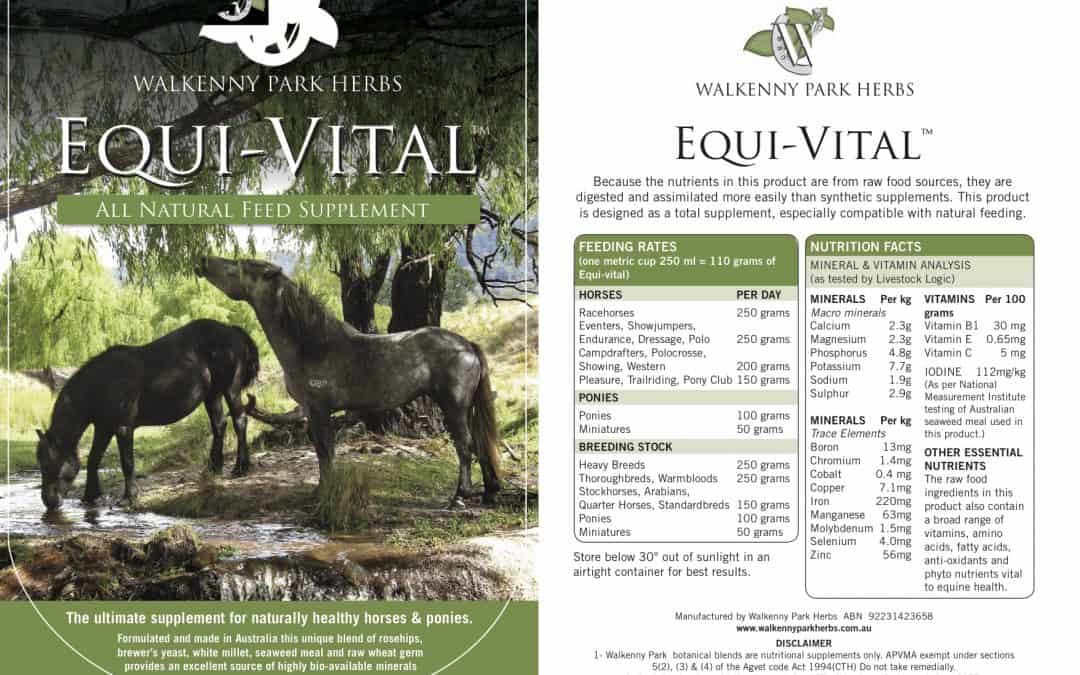 Equi-Vital Essentials – All you need to know!