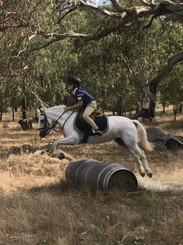 Perfect Ponies Victoria Ferguson