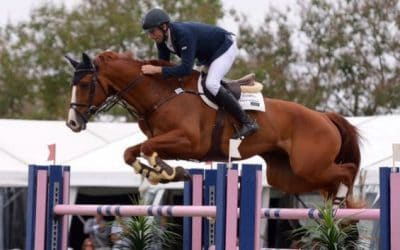 Top Showjumper Loves Equi-Vital