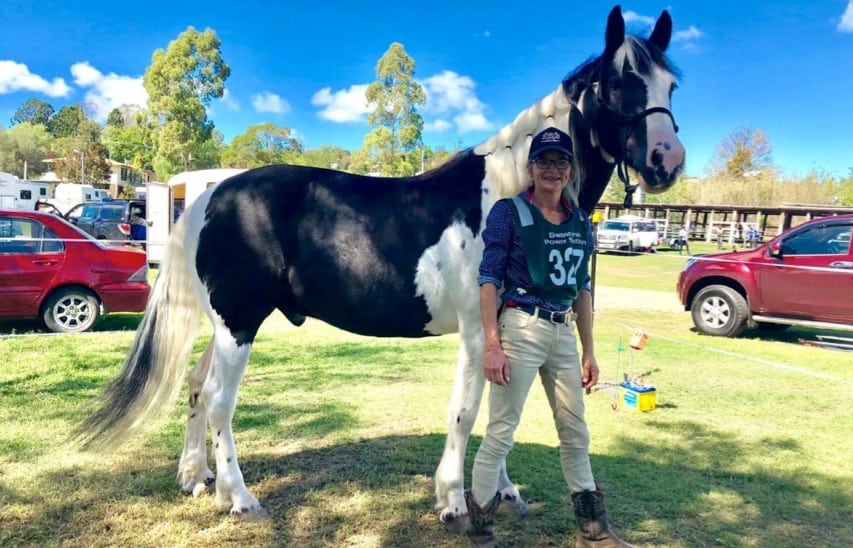 VF Natural Diet a Winner for Equines