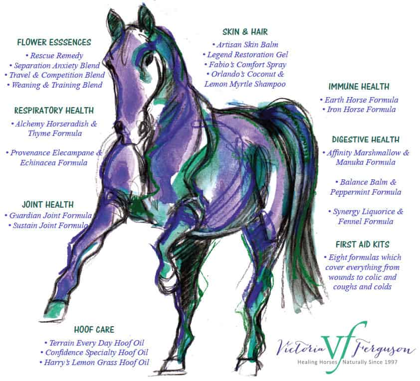 VF Horse Herbal Products Annual Sale Victoria Ferguson