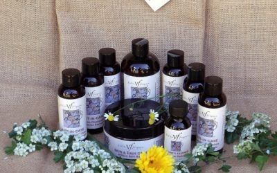 Healing Horse Wounds with VF Equine Herbals