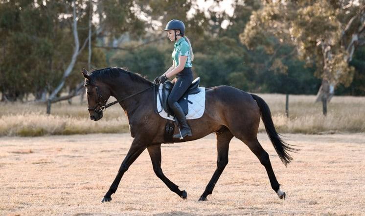 Horses, Herbs, Health & Happiness Victoria Ferguson