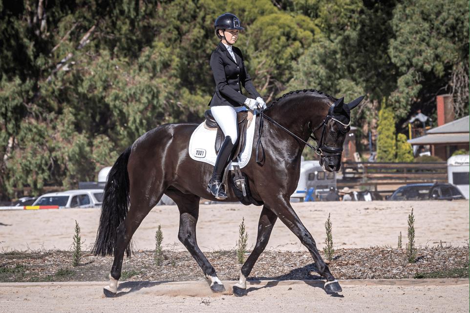 Brianna Duncan Showhorses! Victoria Ferguson